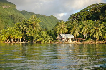 Coastal landscape with a rustic house and coconut trees on the shore, Huahine island, Pacific ocean, French Polynesia