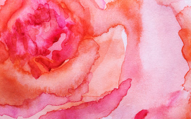 Watercolor painting. Abstract illustration of a rose close up..