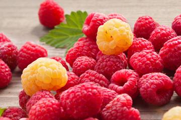 Red and Yellow Raspberries on wooden background. Close up, high resolution product. Harvest Concept