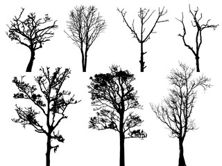 Set of dry trees vector silhouette