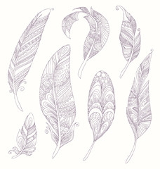 Rustic Ethnic decorative feathers. Hand drawn vintage vector design set. Black and white ink sketch illustration. Vintage Tribal and Decorative zentangle feathers.