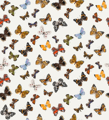 Seamless pattern of butterflies. Watercolor composition, hand-drawing. Decoration with different butterflies.
