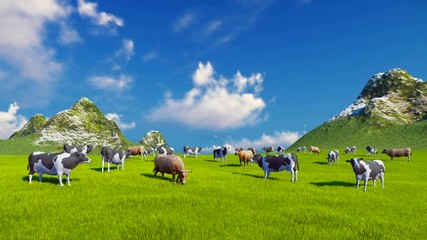 Wall Mural - Herd of mottled dairy cows graze on a verdant alpine pasture at sunny day. Mountain peaks on the background. Static shot. Realistic 3D animation.