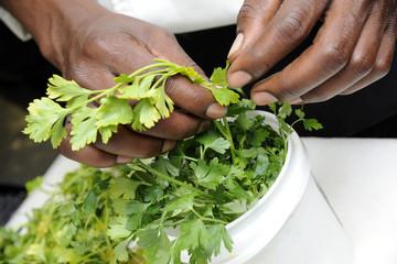 Chefs Hands Preparing Greens