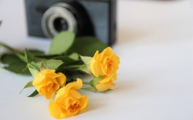 Vintage camera and roses