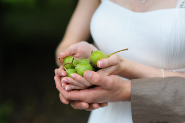 Full handful of pears
