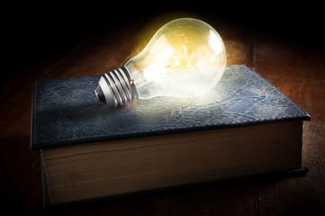 Light bulb on old book.