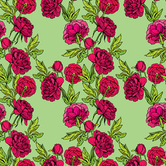 Seamless pattern with Realistic graphic Peony flowers - hand dra