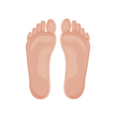 Beautiful a foot and a heel on a white background.illustration.vector