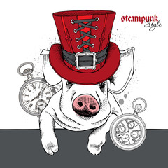 The image of the Pig portrait  in the steampunk top hat and with watch. Vector illustration.