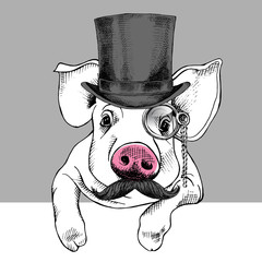 Pig portrait in a hat bowler and with monocle. Vector illustration.