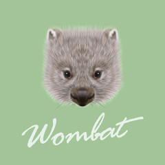 Vector Illustrated portrait of Wombat.