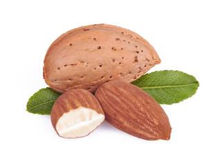 almonds in close-up