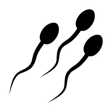 Sperm or spermatozoon cells flat icon for apps and websites