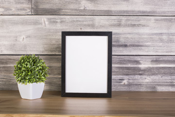 Plant and blank frame