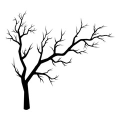 Vector silhouette of spreading tree isolated on white backdrop.