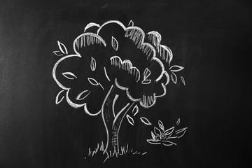 Tree drawn on blackboard