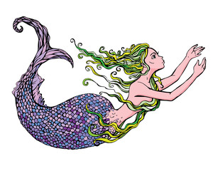 Hand drawn Illustration of a Beautiful mermaid girl isolated on