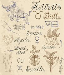 Full set of symbols for zodiac sign Taurus or Bull