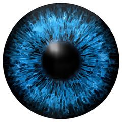 Eye iris vector texture