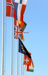 flags of many nations in the wind on a sunny day with blue sky
