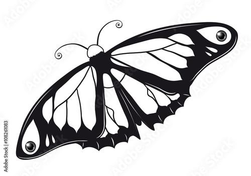 Butterfly Outlines Ausmalbild Schmetterling\