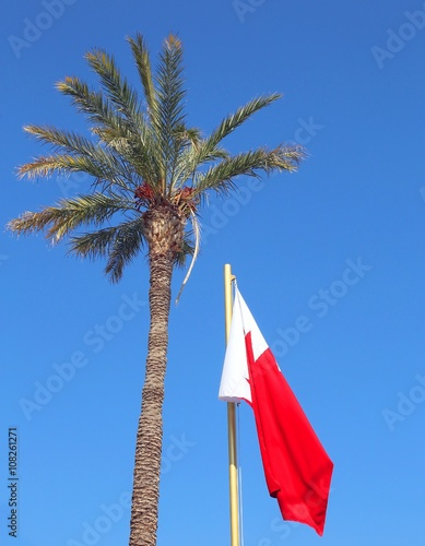 flag of bahrain with palm tree with dates