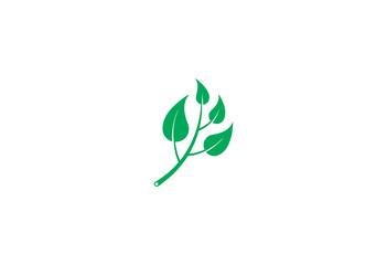 Ecology Design Background logo