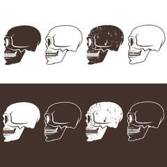 set of aggressive skulls vector design template