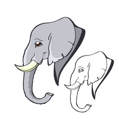 Portrait of a smiling good elephant with small tusks in a cartoon style. Hand-drawn elephant's head in profile. Linear and colorized image.
