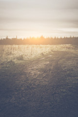 Nature Background with Instagram Style Filter