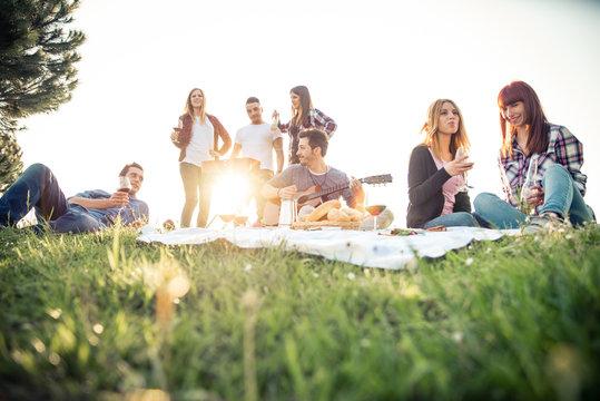 Friends having picnic