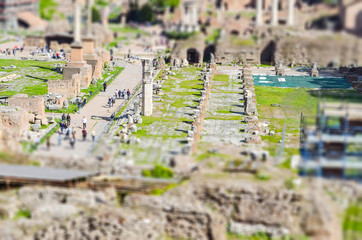 Fotomurales - Ruins of the Roman Forum in Rome. Tilt-shift effect applied