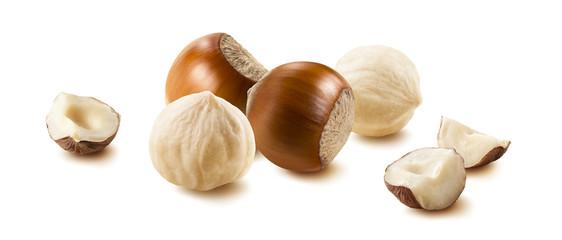Hazelnut nut group many horizontal isolated on white background