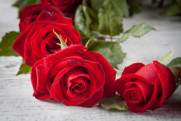 Red roses on white rustic wooden table extreme closeup. Shallow depth of field.