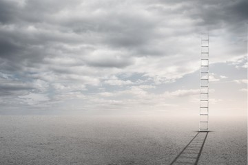 Composite image of ladder