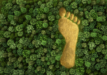 Fototapeta Concept of ecology. Imprint of human footprint in nature. It was