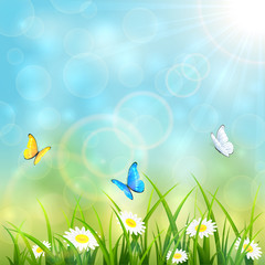 Flying butterflies on blue summer background