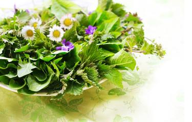 Essbare Kräuter und Blüten im Frühling, Frühjahrskur mit frischem Salat aus Wildkräutern, Brennnessel, Löwenzahn, Giersch, Taubnessel, Gänseblümchen, Ehrenpreis, Veilchen