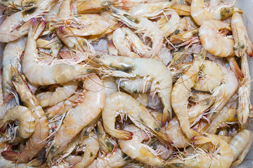 Prawns at market