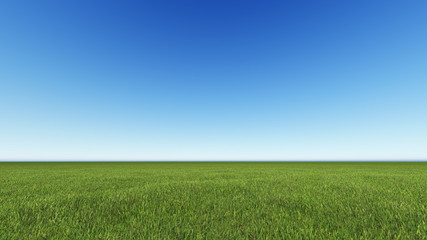 Beautiful landscape, grass clean blue sky