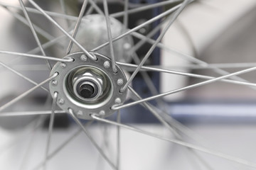 Wheel hub with spokes