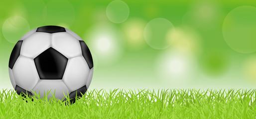 Fußball - Grüne Wiese (verlauf)
