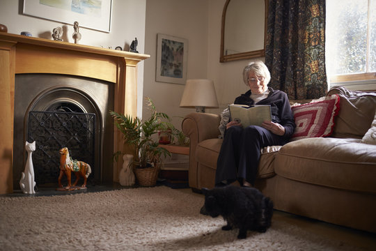 Senior Woman With Pet Cat Sitting On Sofa Reading Book