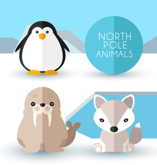 North Pole Animals : Vector Illustration