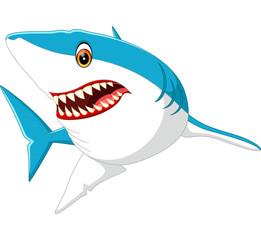 illustration of cute shark cartoon