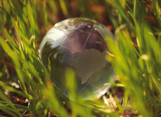 Crystal glass globe in green grass