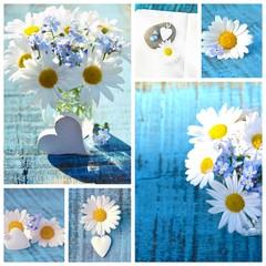 Wall Mural - Blumen Collage - Blumenstrauß - Gänseblümchen und Vergissmeinnicht