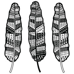 Aztec zentangle style feathers symbolizing native American culture in black and white with tribal ornaments