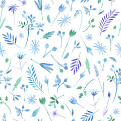 Floral seamless pattern.Turquoise floral pattern with wild flowers and herbs on a white background, drawing watercolor.